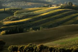 The landscape in Chianti Classico is a poetic as its finest wines
